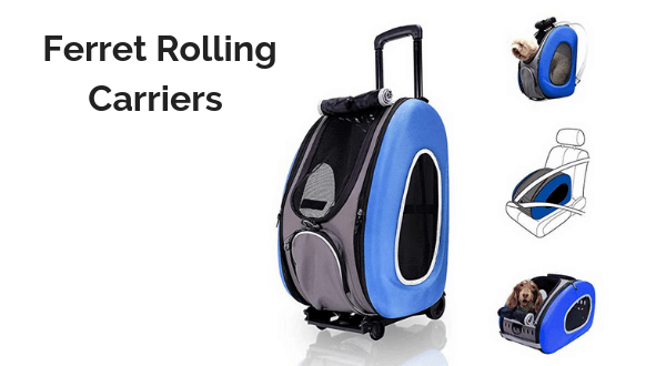 Ferret Rolling Carriers