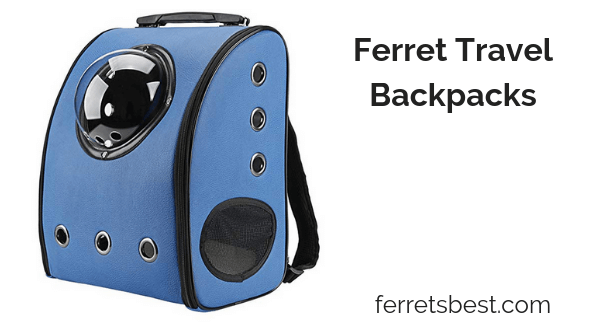 Ferret Carrier Backpacks